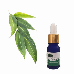Pure Tea Tree Liquid Plant Fragrance
