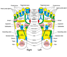 Load image into Gallery viewer, Foot Reflexology Walk Stone