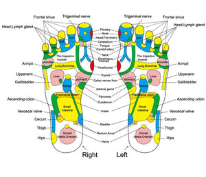 Foot Reflexology Walk Stone
