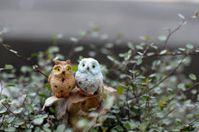 Load image into Gallery viewer, Cute Owls Fairy Garden Ornament Decor