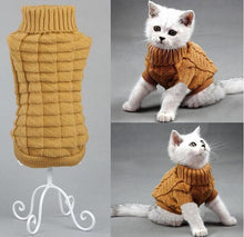 Load image into Gallery viewer, Sphinx Cat Coat