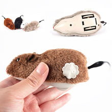 Load image into Gallery viewer, Power Plush Mouse