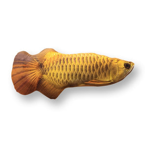 Fish-Shaped Toy