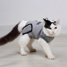 Load image into Gallery viewer, Recovery Suit For Cat