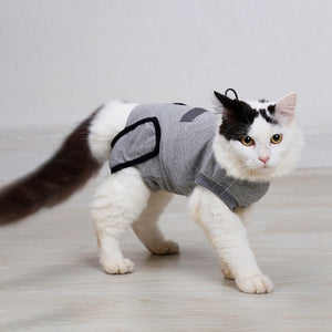 Recovery Suit For Cat