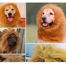 Load image into Gallery viewer, Lion Mane Warm Wig