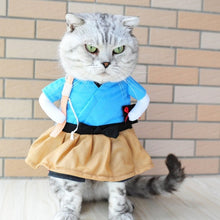 Load image into Gallery viewer, Cat Costume