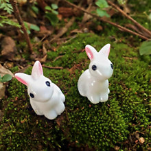 Load image into Gallery viewer, Mini Rabbit Garden Ornament