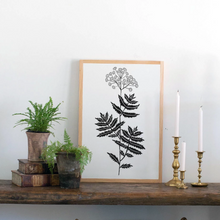 Load image into Gallery viewer, Botanical print of Blue Tansy on Wood Sign