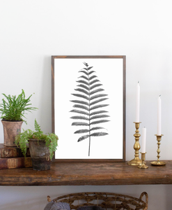 Modern farmhouse sign with fern graphic 2 white background