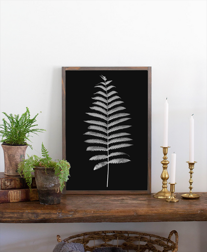 Wood sign with print of fern and black background