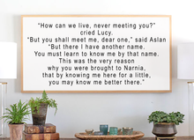 Load image into Gallery viewer, Framed wood sign with quote from Narnia