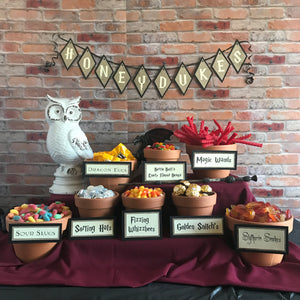 """Honeydukes"" Party Banner &  Candy Bar Signs"
