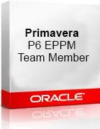 Oracle, Software, Oracle Primavera P6 Enterprise Project Portfolio Management Team Member - Innovative Management Solutions, Inc.
