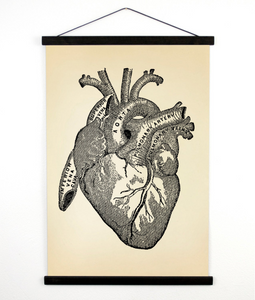 ANATOMY HEART WALL HANGING
