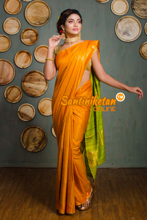 Trendy Zari Border Ghicha Anchol Saree SN20192575