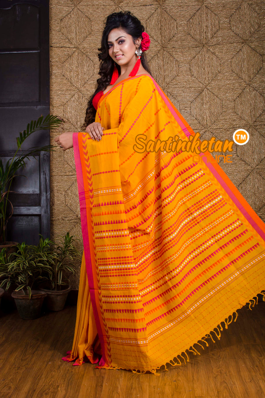 Begampuri Saree SN20192045