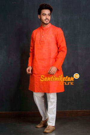 Cotton Kurta SN20209452