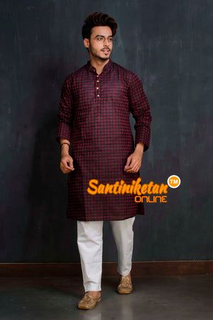 Cotton Kurta SN20209467