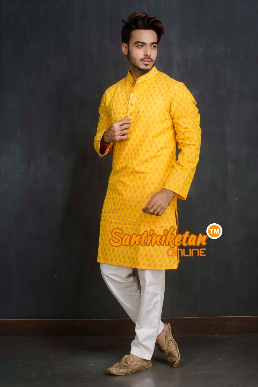 Cotton Kurta SN20209494