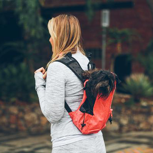 Doggy Cruiser Backpack - Cherry Red ™ $̶1̶0̶0̶