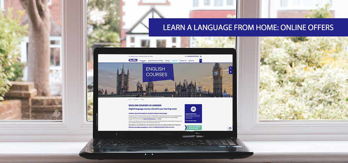 Berlitz Connect (Live Online Classes)