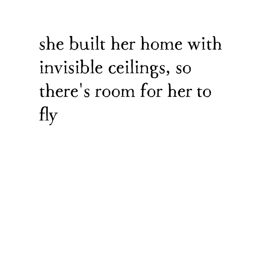 bird & brush: invisible ceilings notecard