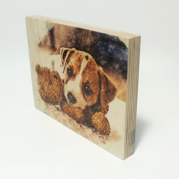 Birch Ply Photo Block