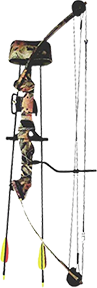 Sa Sports Moose Compound Bow Set 35#