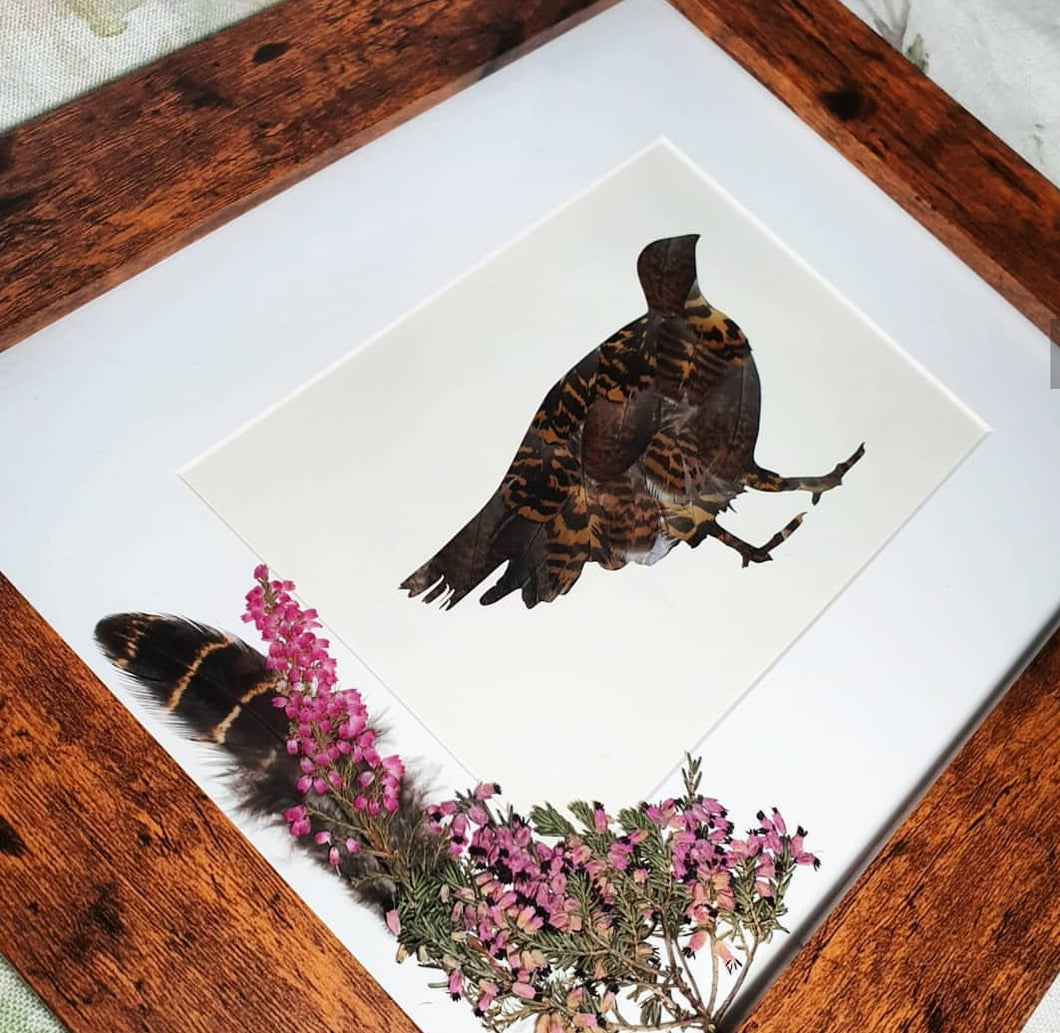 Grouse & Heather -