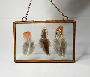 Small Pheasant Feather Floating Frame