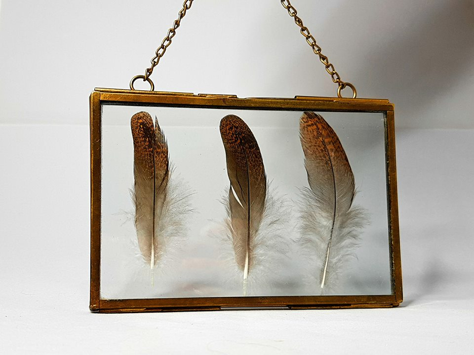 Grouse Feather Floating Frame