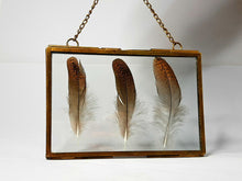 Load image into Gallery viewer, Grouse Feather Floating Frame