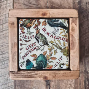 Red Squirrel Coasters
