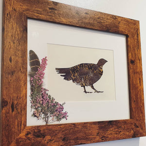 "Grouse & Heather - ""Feather and Foliage"""