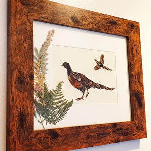 Feather & Foliage - Pheasant edition