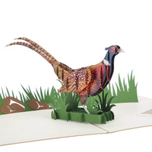 "Load image into Gallery viewer, Pheasant ""Takes Some Beating"" Pop Up Card"