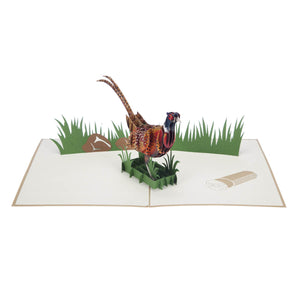 "Pheasant ""Takes Some Beating"" Pop Up Card"