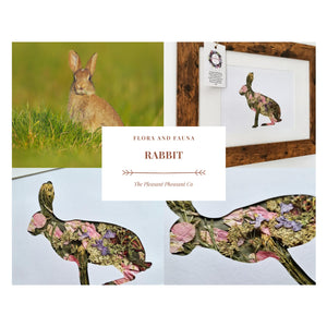 Rabbit - Flora & Fauna