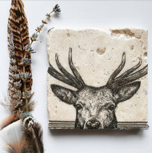 Load image into Gallery viewer, Peeking Stag coasters