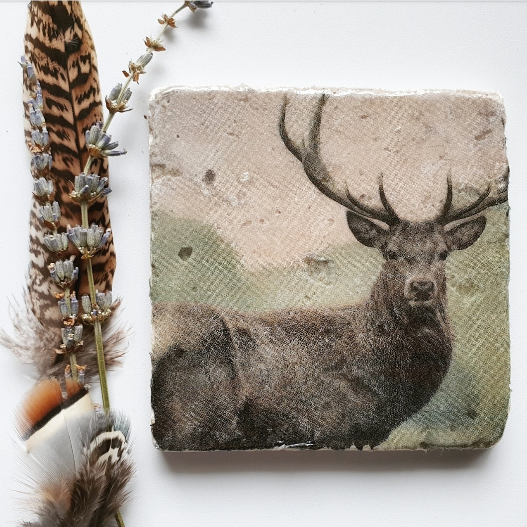Majestic Stag coasters
