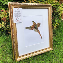 Load image into Gallery viewer, Flying Pheasant - Flora & Fauna (1 Available)
