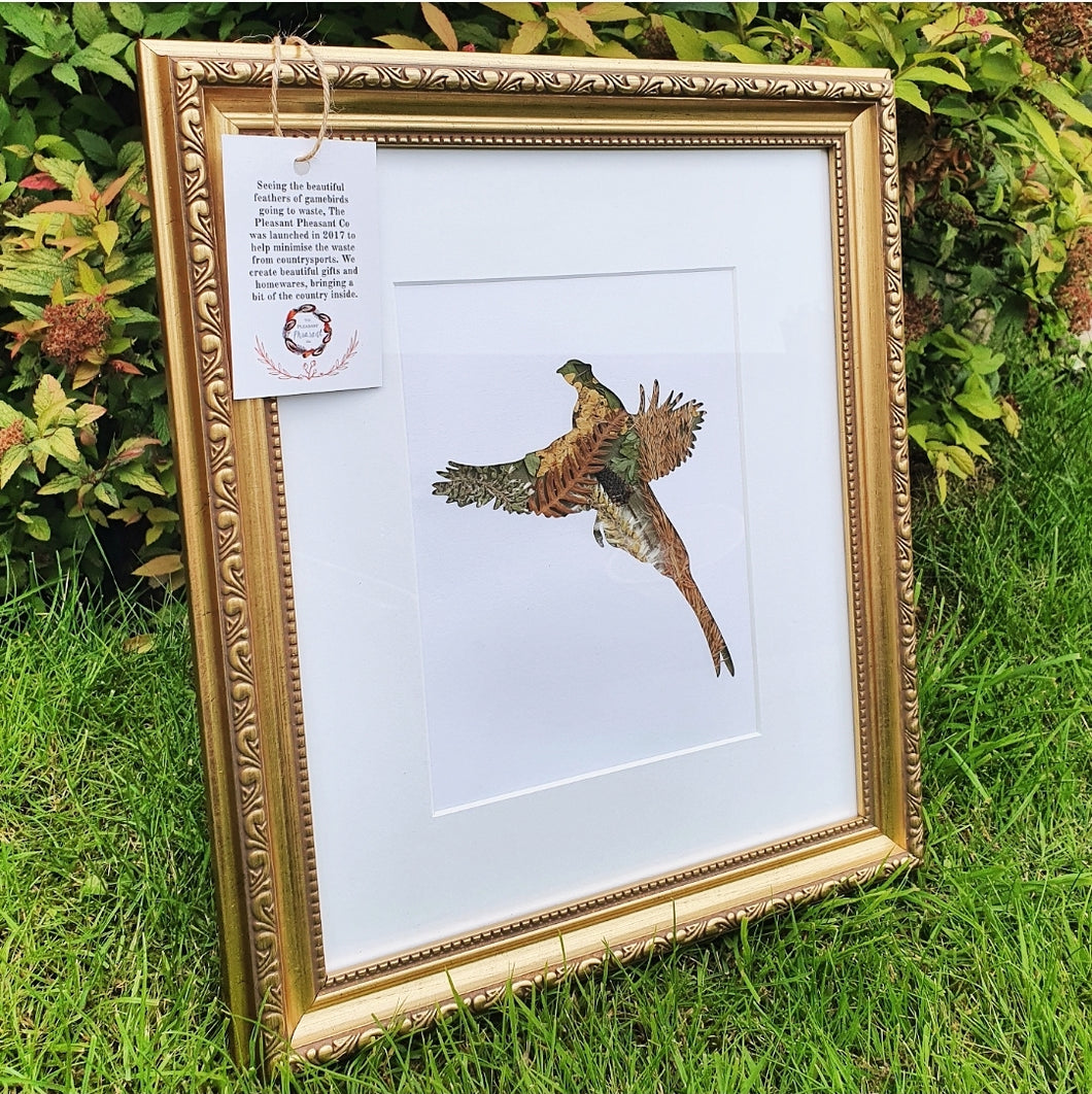 Flying Pheasant - Flora & Fauna (1 Available)