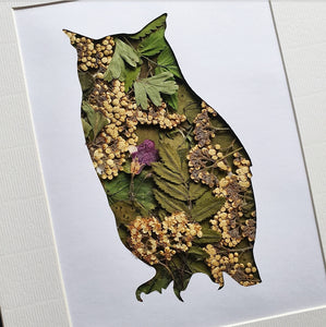 Owl - Flora & Fauna (1 Available)