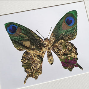 Butterfly - Flora & Fauna (1 available)