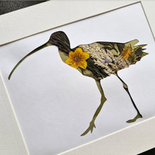 Load image into Gallery viewer, Curlew - Flora & Fauna