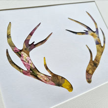 Load image into Gallery viewer, Antlers - Flora & Fauna