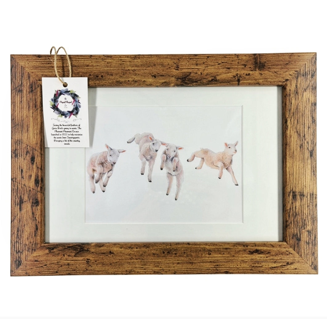 Leaping Lambs framed print