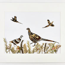 Load image into Gallery viewer, Feather & Foliage - Pheasant and Partridge