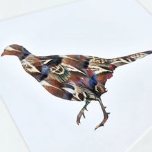 Load image into Gallery viewer, Limited Edition Melanistic Pheasant